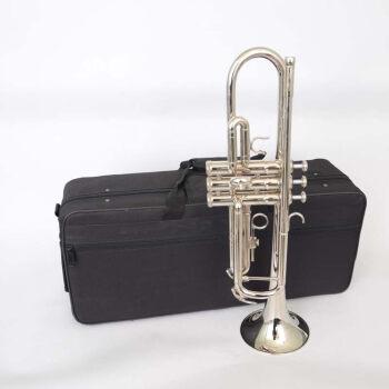 Bb tolanペレット楽器は大人と高齢者の初心者向けに一般的なレベルアップ試験を行います。銅管楽器のテートペレットはニッケル銀色めっきをします。