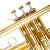金音Bbトゥラット楽器入門試験のパスパスパススペル専用のテーラーペレット100