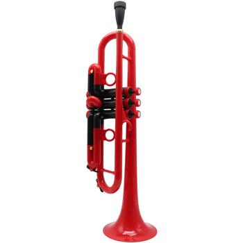 coolwindクールな楽器ABS高分子ポリマーのテーンペートはプラスチック楽器の降bテートをプラスチック製のテーラーにしました。